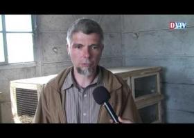 Bővült a devecseri startmunka program állattartó telepe